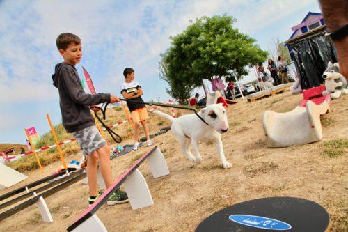 Parcours canin-crédit APRR