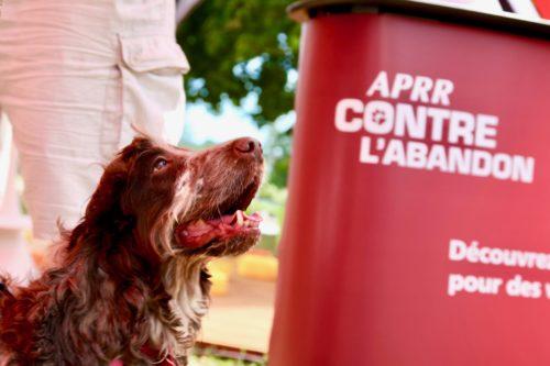 @APRR_Espaces canins